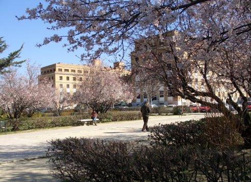 27-2014-03-06-primavera